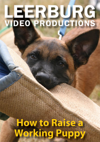 How to Raise a Working Puppy DVD